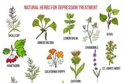 成功的中草藥可以改善肝氣